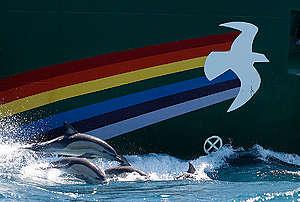 Rainbow Warrior in New Zealand. © Nigel Marple / Greenpeace