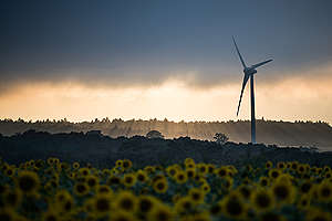 Wind Farm in Fukushima. © Guillaume Bression / Greenpeace