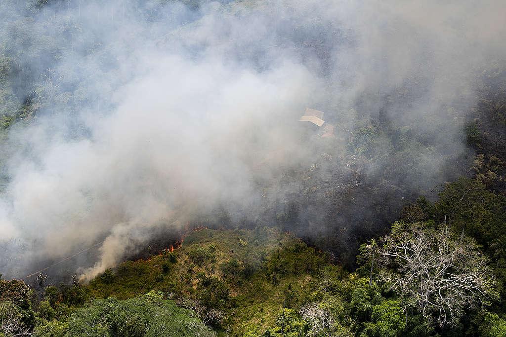 Skogsbränder i Amazonas oktober 2018