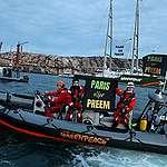 Preem vill satsa på bränslen från tallolja – Greenpeace kommentar