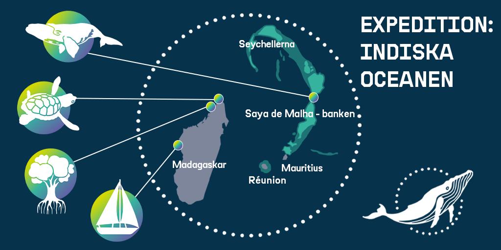 Karta över Arctic Sunrises besöksområden i Indiska oceanen.