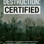 Certifiering har inte skyddat skogen
