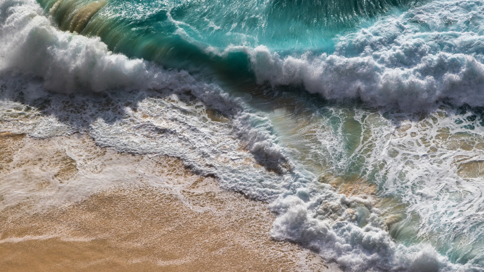 hyllning till havet