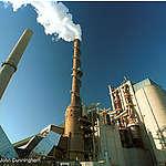Greenpeace om Cementabeslutet: Regeringen struntar i grundlagen
