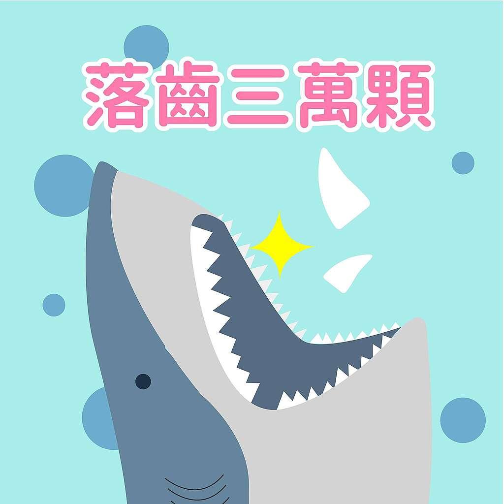 鯊魚趣味小知識:牠一輩子都在換牙!鯊魚一生都能更新或替換牙齒(不怕蛀牙真好啊QQ),不同種類的鯊魚替換週期略有不同,有些鯊魚一生中可以換超過三萬顆牙齒。