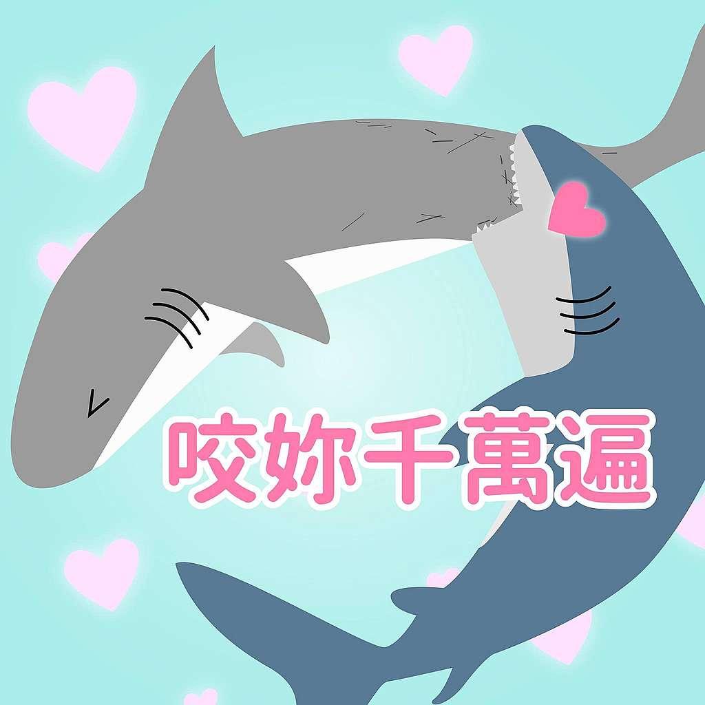 鯊魚趣味小知識:愛她就忍不住要咬她?很多種類的鯊魚都是母鯊的皮較厚,母鯊魚的皮膚可以是雄鯊魚皮膚的兩倍厚,為什麼呢?據說是為了承受在交配過程中被雄鯊魚啃咬!哦真是厚重的愛呀~