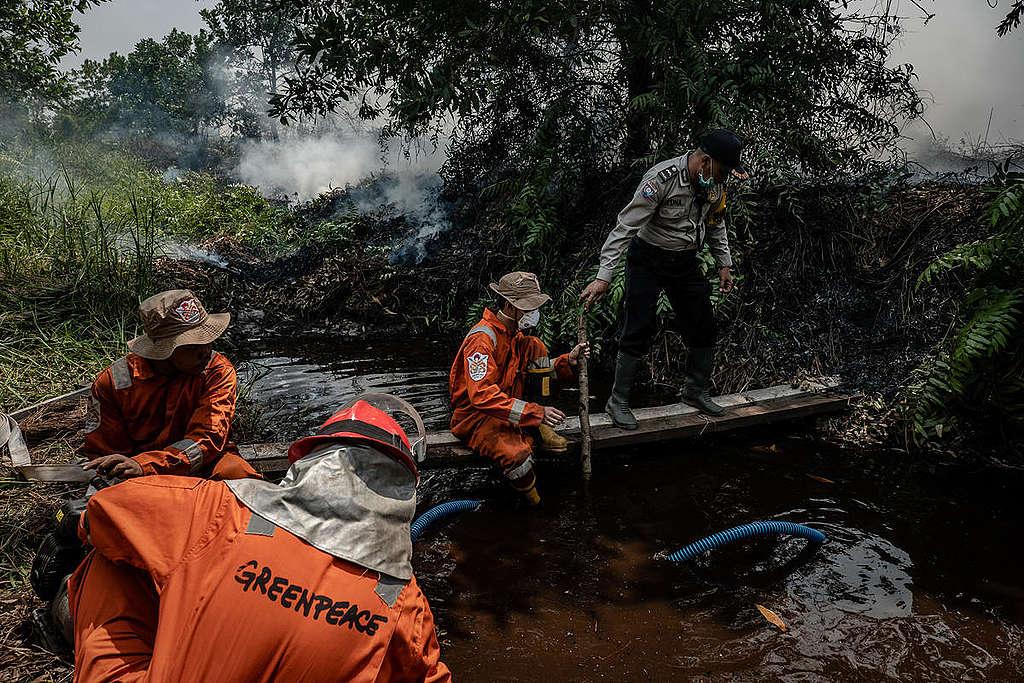 綠色和平印尼辦公室的林火消防隊(FFP)進入加里曼丹中部協助滅火。