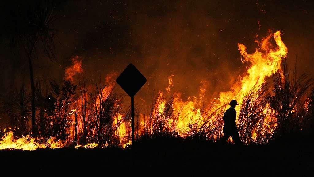 澳洲叢林大火失控,上千人被迫撤離住所。