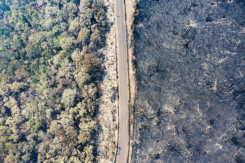 新南威爾斯州袋鼠谷(Kangaroo Valley)大火過後,航拍攝於1月4日,對比大火前後景象。