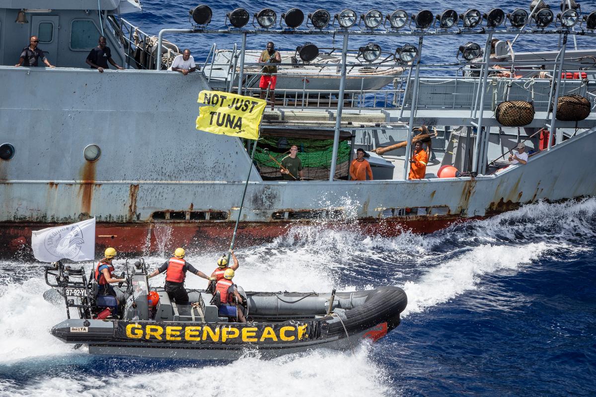 遠洋漁業 鮪魚 泰聯 過度捕撈