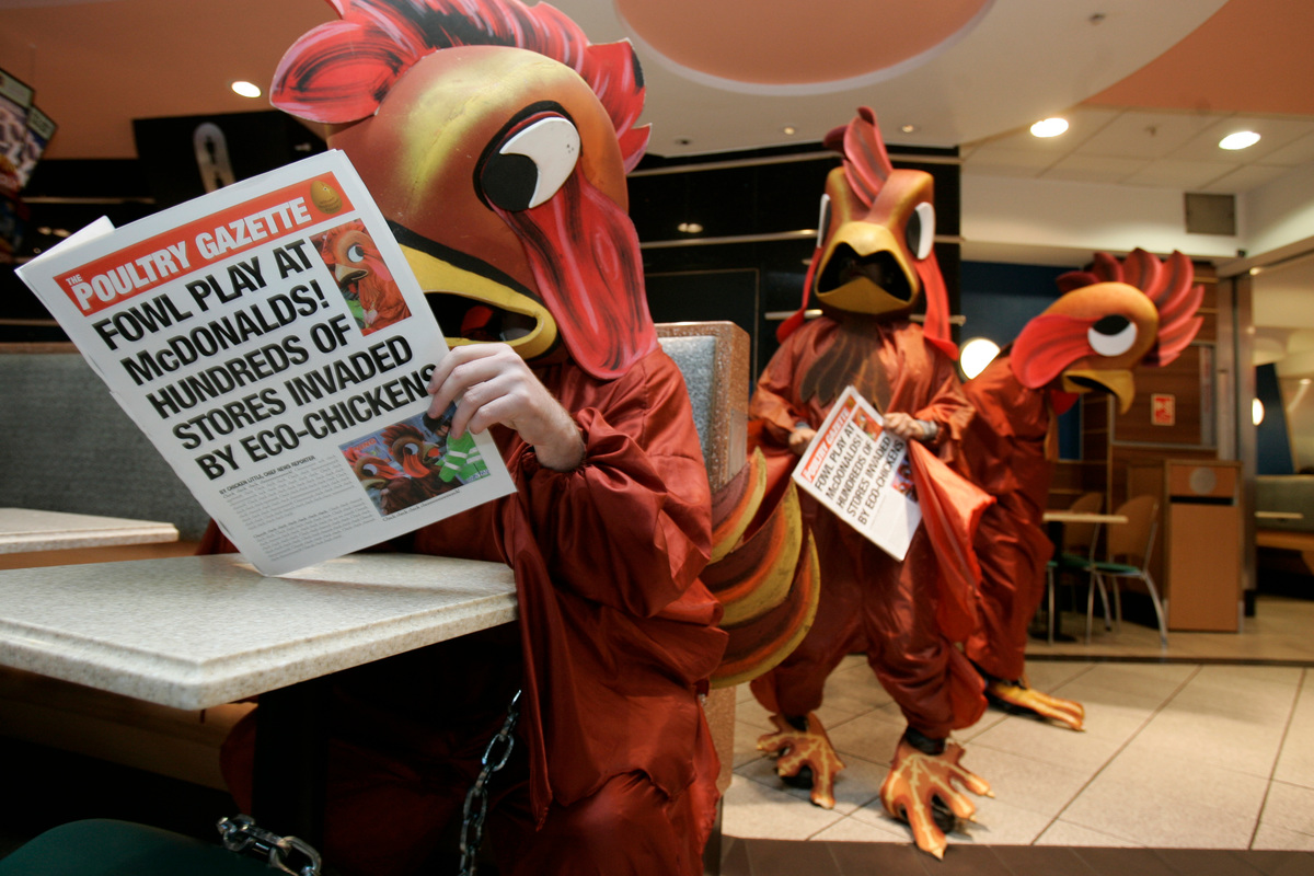 麥當勞 大豆 雞隻 倫敦 亞馬遜 綠色和平