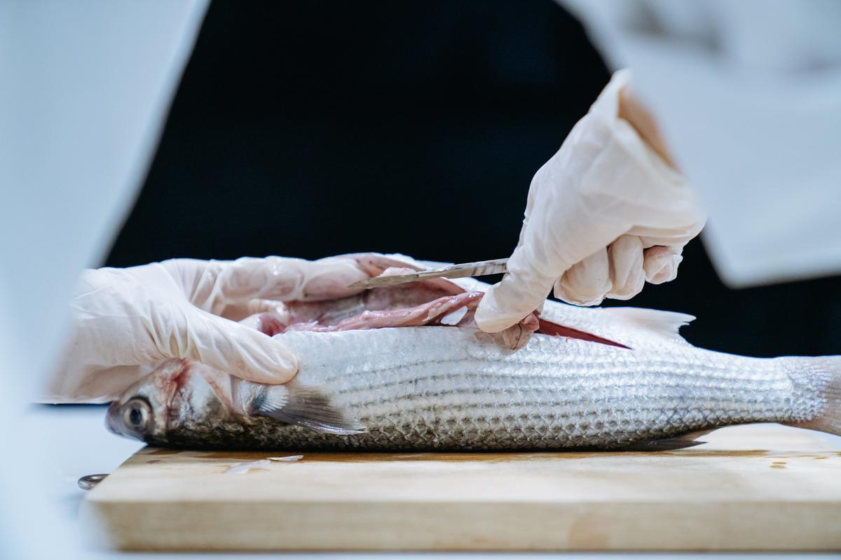綠色和平曾研究魚類、甲殼類生物是否受塑膠污染