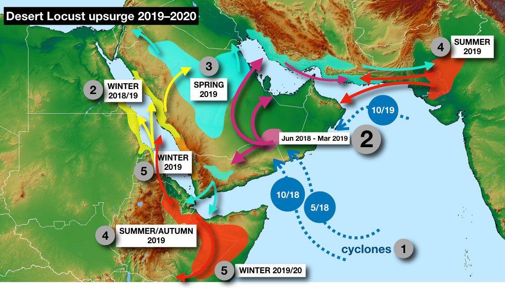 (點圖可放大)2019-2020年沙漠蝗蟲災害爆發過程示意圖,藍色虛線表示三次熱帶氣旋的行徑方向及登陸時間。