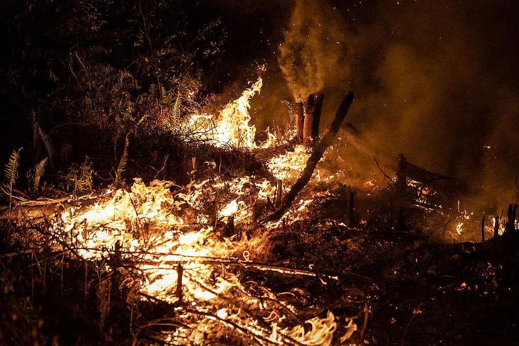 2019年8月,印尼加里曼丹中部發生森林大火。
