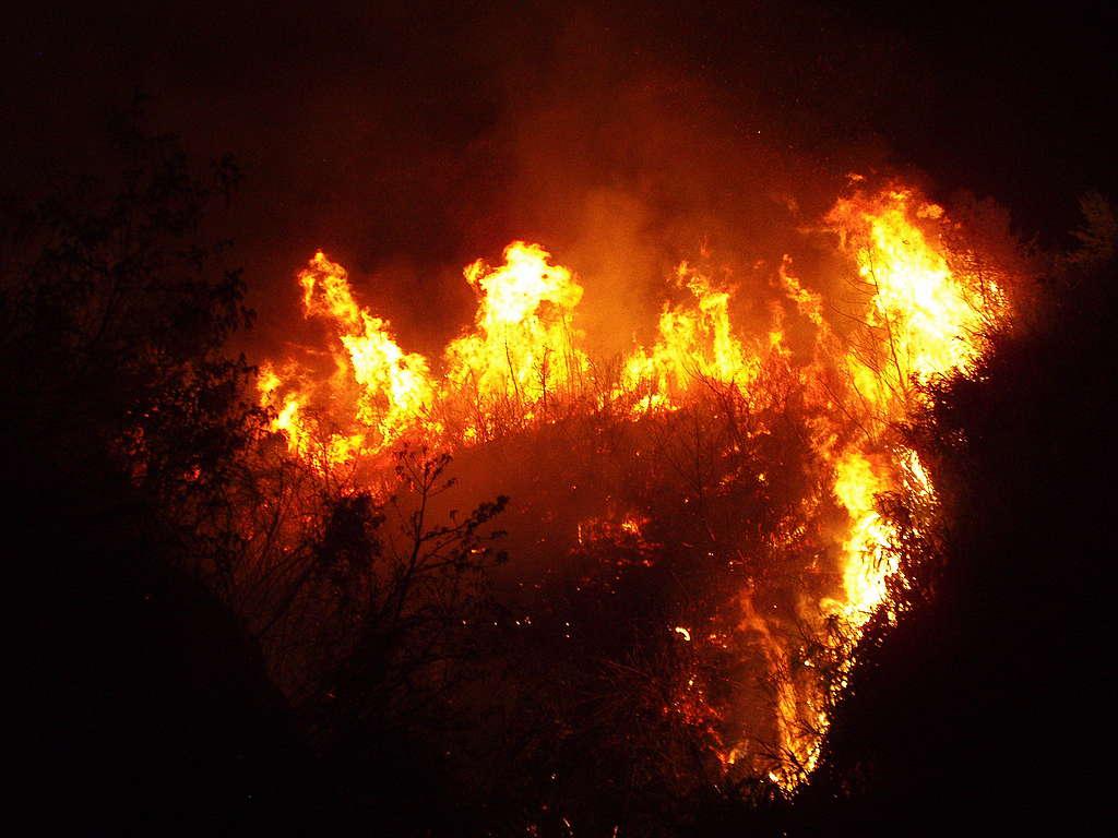 2010年尖石田埔發生火災。