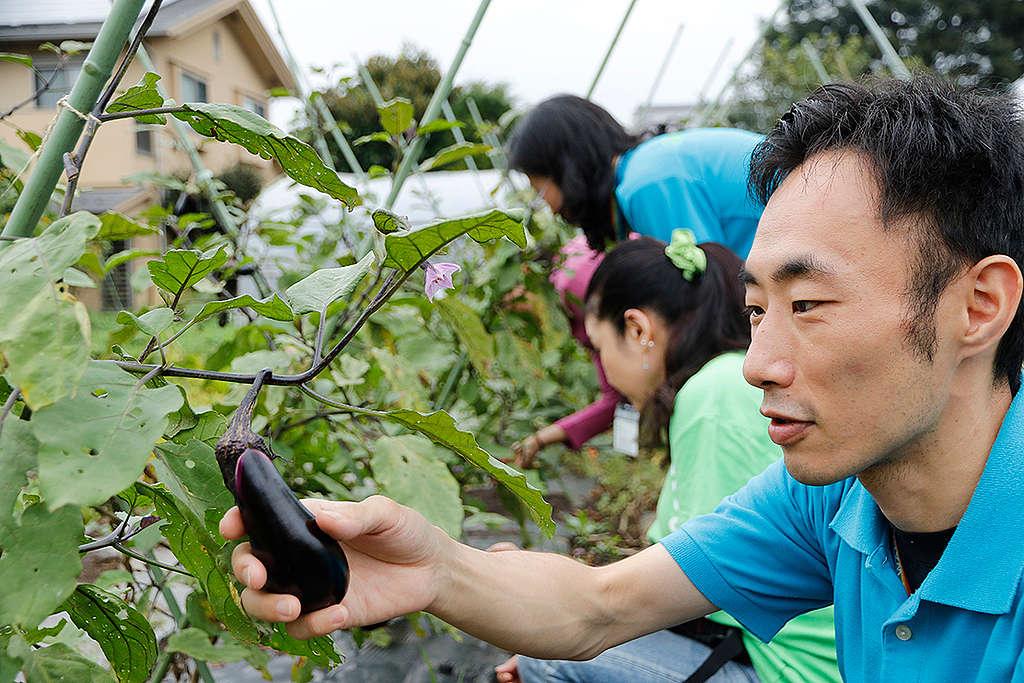 位於日本東京的生態農場。