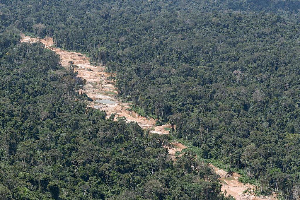 採礦業大幅清空亞馬遜林地,光是2020年1月至4月,總計已有879.87公頃森林遭砍伐。