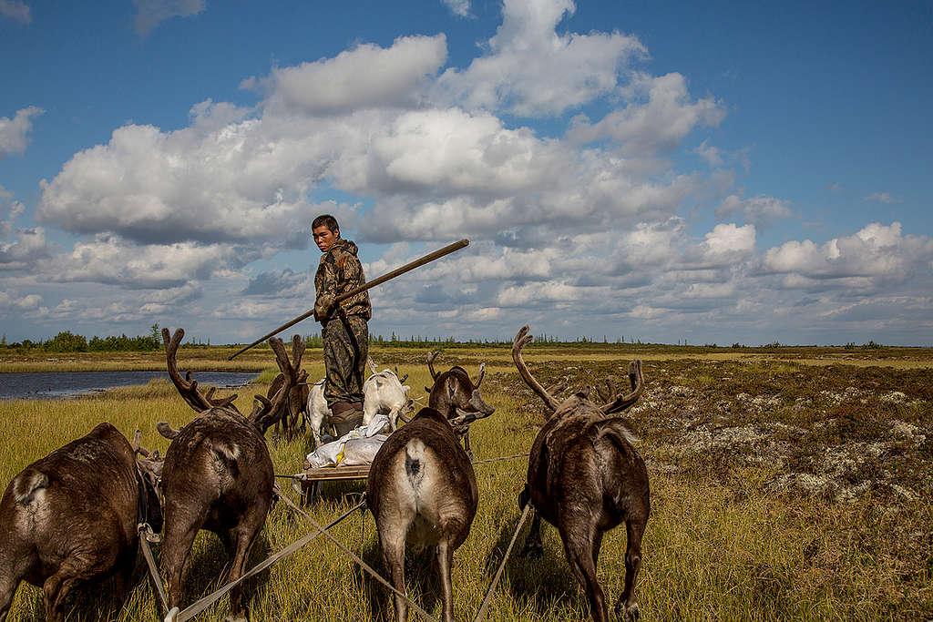 泰米爾半島放牧馴鹿的原住民,河水對當地生態與原住民生活都是非常重要的資源。