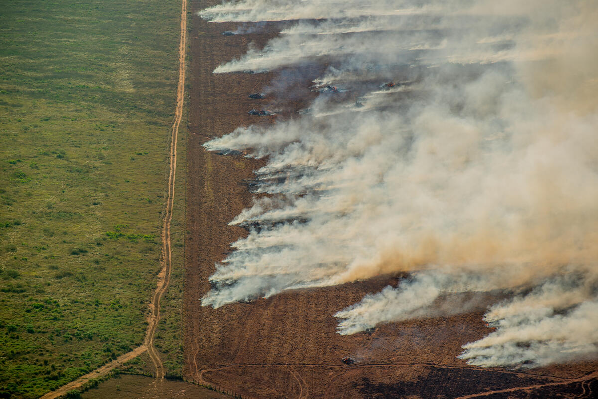 2020年7月,綠色和平巴西調查團隊於亞馬遜紀錄火災與毀林實況。