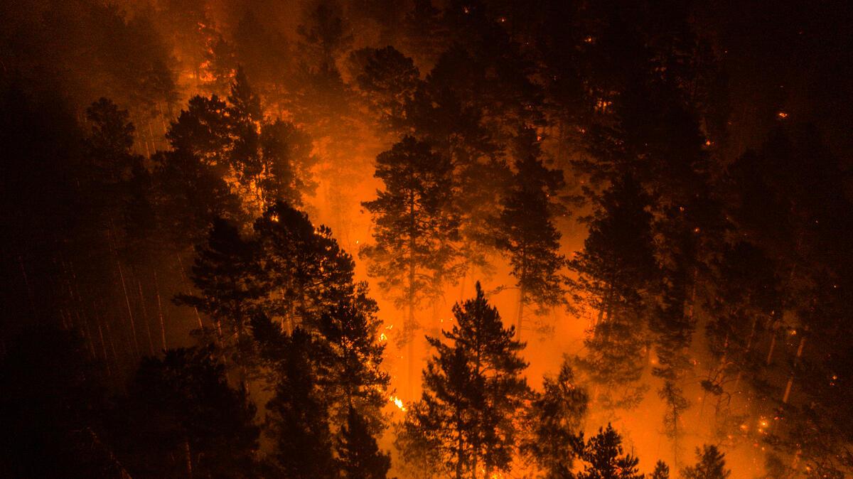 2020年7月21日,綠色和平調查團隊前往火災現場,實地記錄大火現況,拍攝出本篇文章一系列的影像。