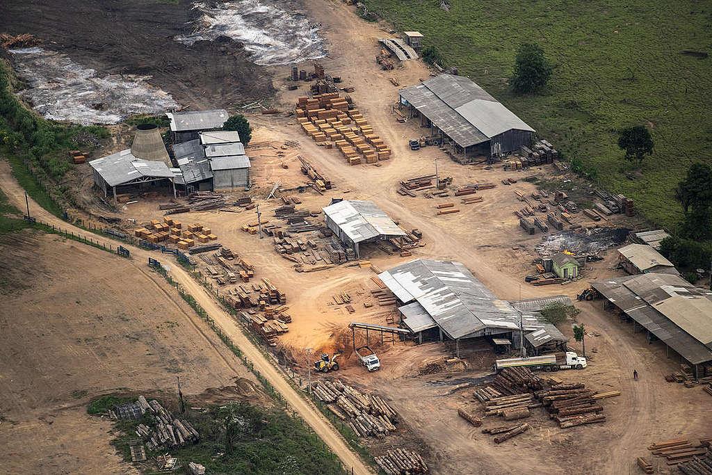 巴西亞馬遜的伐木營。