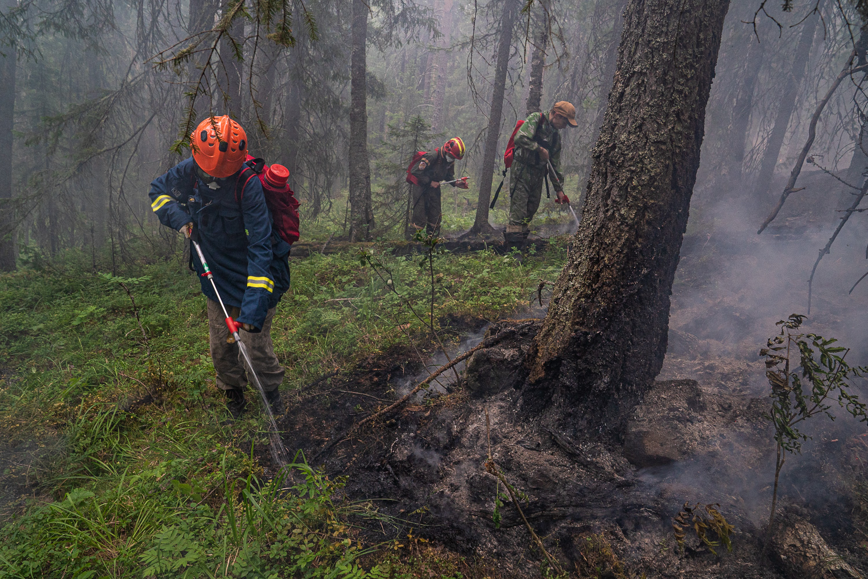 直至7月31日,多方組成的消防團隊極力試圖控制大火,建造、挖出防火線,使火勢不會蔓延到更遠的地方。