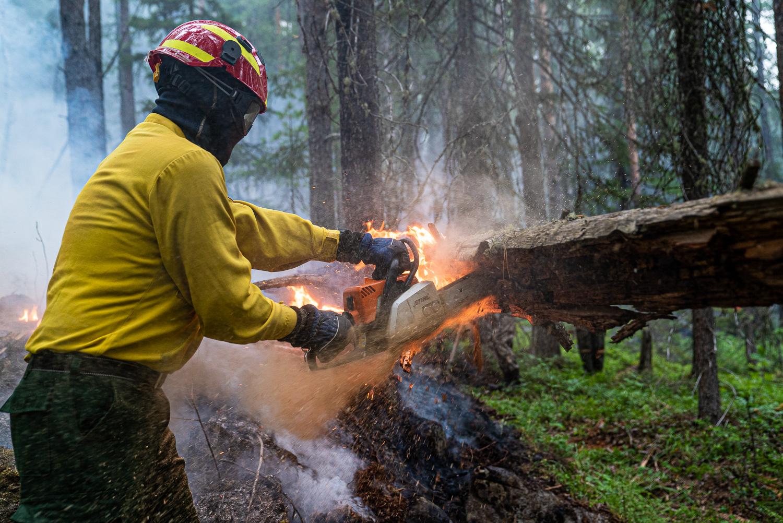 在綠色和平的施壓之下,成功使當局政府增加消防資源,前往撲滅與預防火勢。