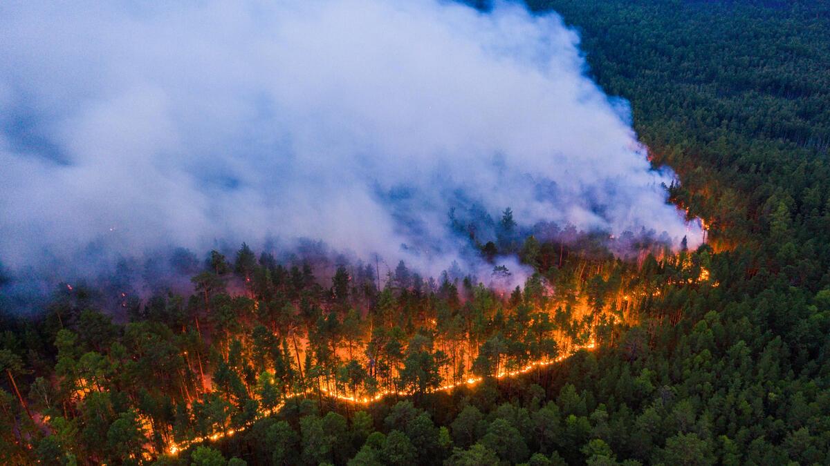 氣候危機,西伯利亞大火的成因與極端氣候息息相關,而大火所釋放的二氧化碳更助長氣候變遷,形成惡性循環。