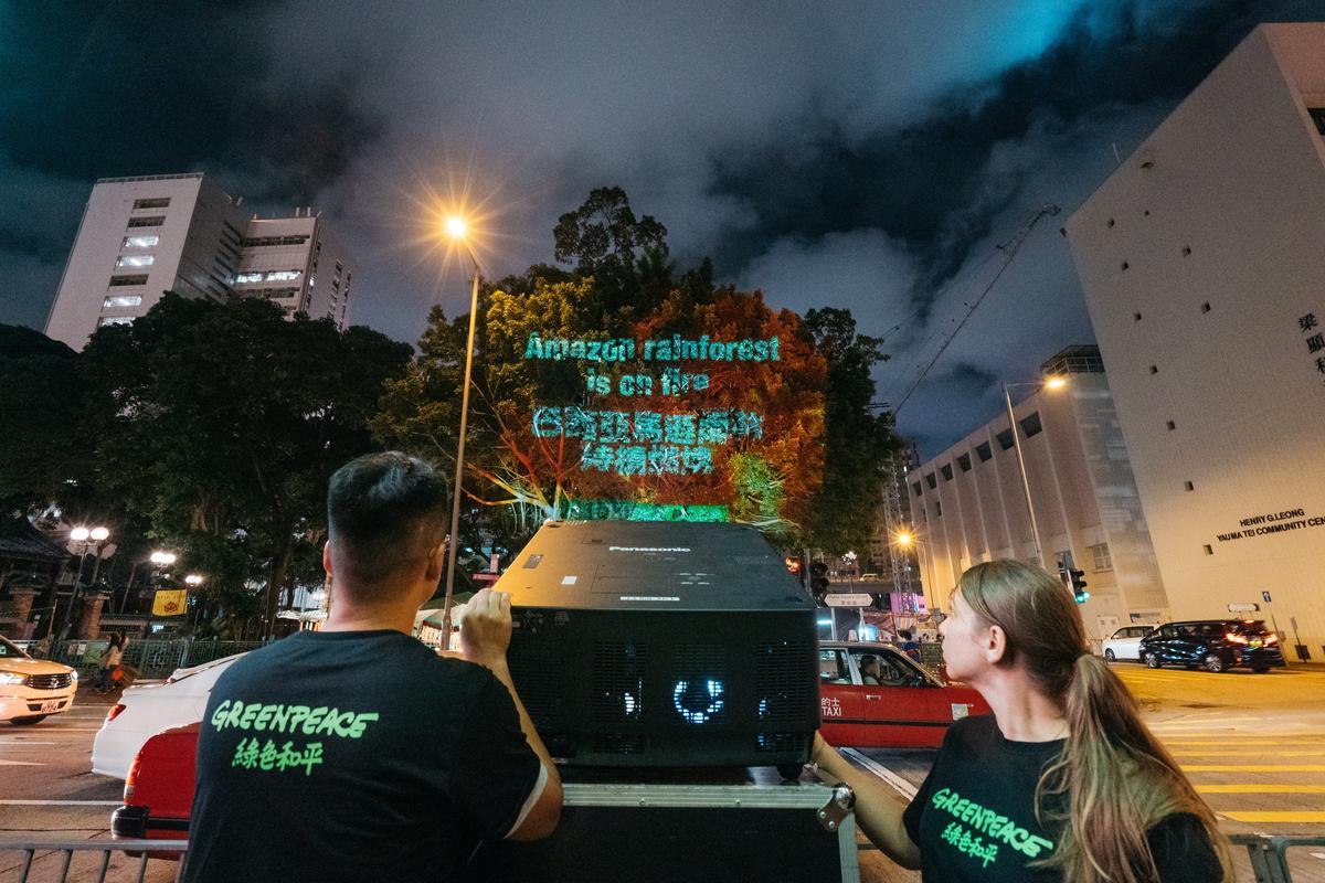 2019年9月12日,綠色和平香港行動者於油麻地大樹上投影大火景象,更向涉及購買毀林肉品的跨國速食企業麥當勞、漢堡王、肯德基倡議,停止助長焚燒珍貴雨林。