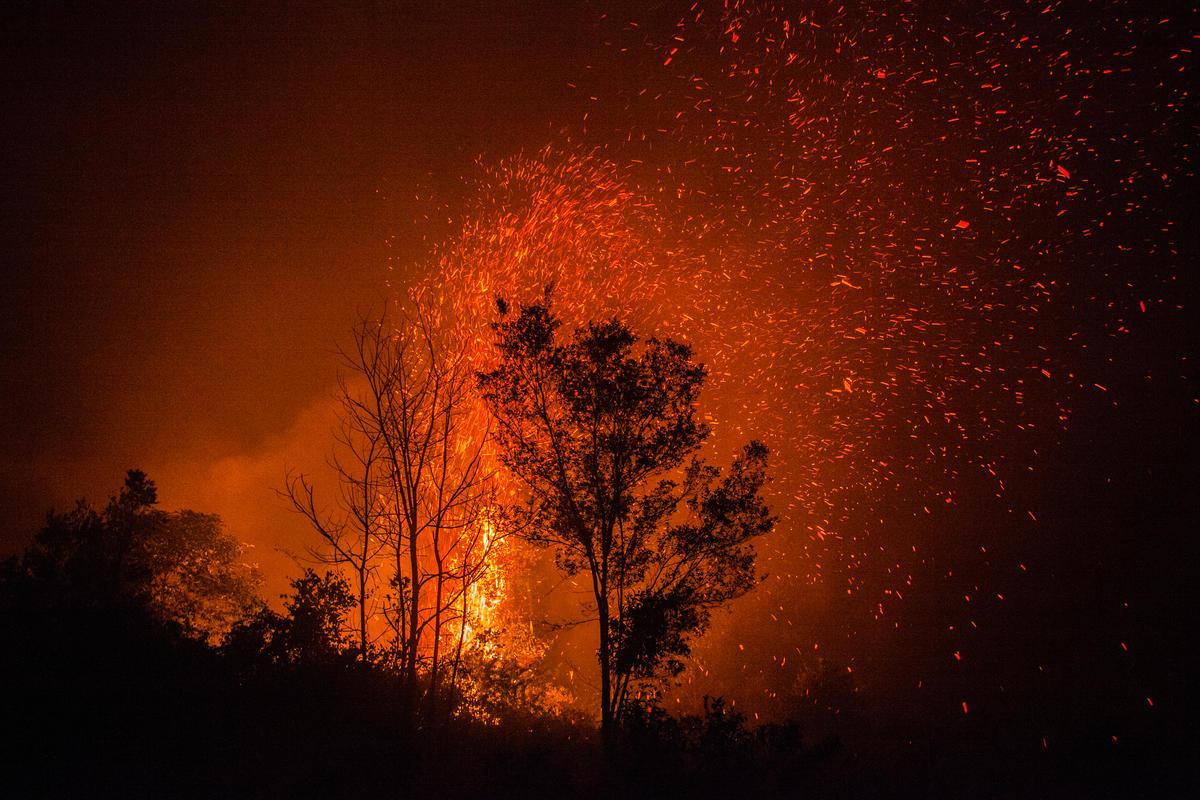 官方統計印尼大火已燒毀超過80萬英畝的森林,隨著印尼森林大火加劇,印尼政府宣布蘇門答臘與加里曼丹島的六個省進入緊急狀態。