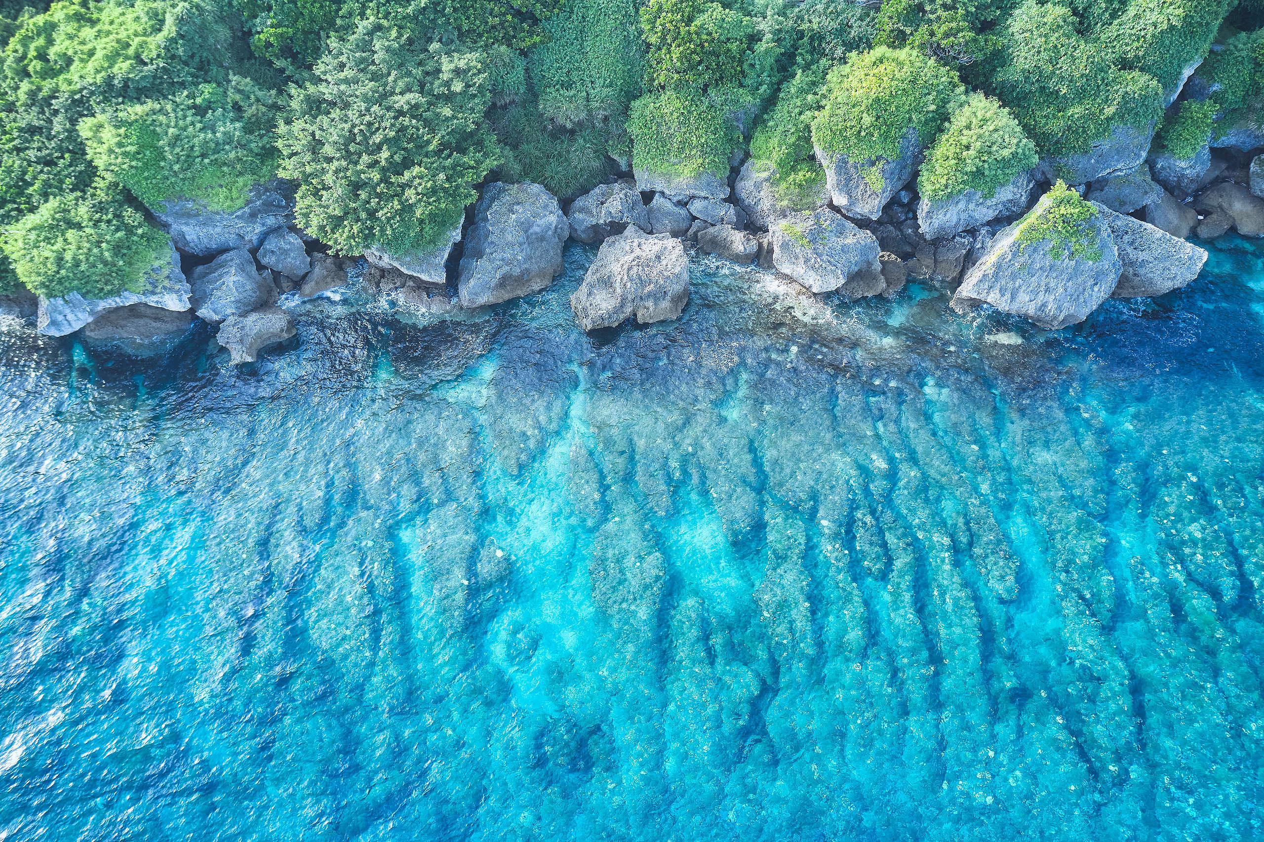 臺灣四周環海,大海的資源與我們息息相關,更需要確實地守護海洋資源。