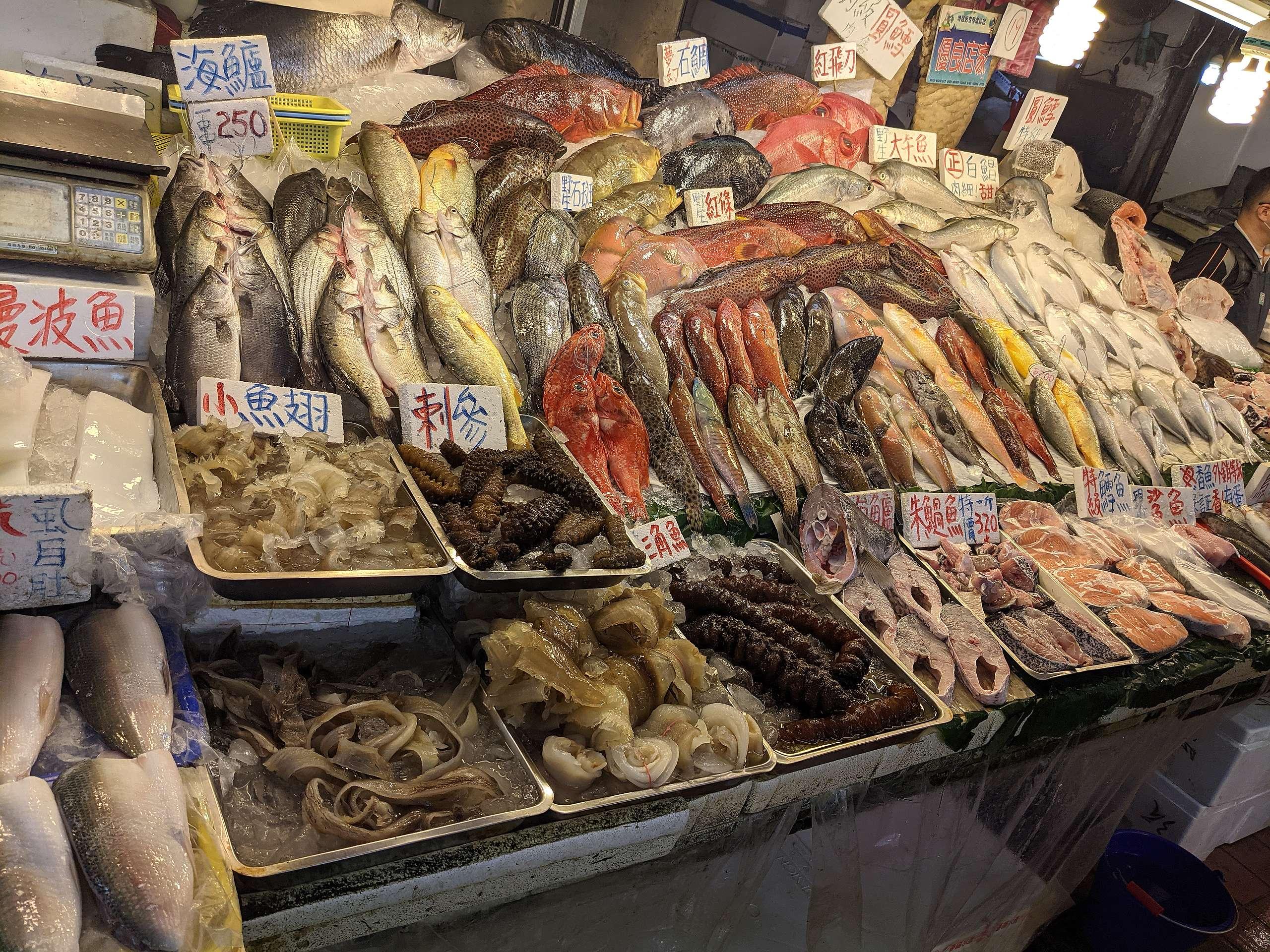 臺灣的沿近海魚獲帶動大量經濟產值,然而近幾年的魚獲量已大幅下降,顯示海洋資源逐漸邁向耗竭。