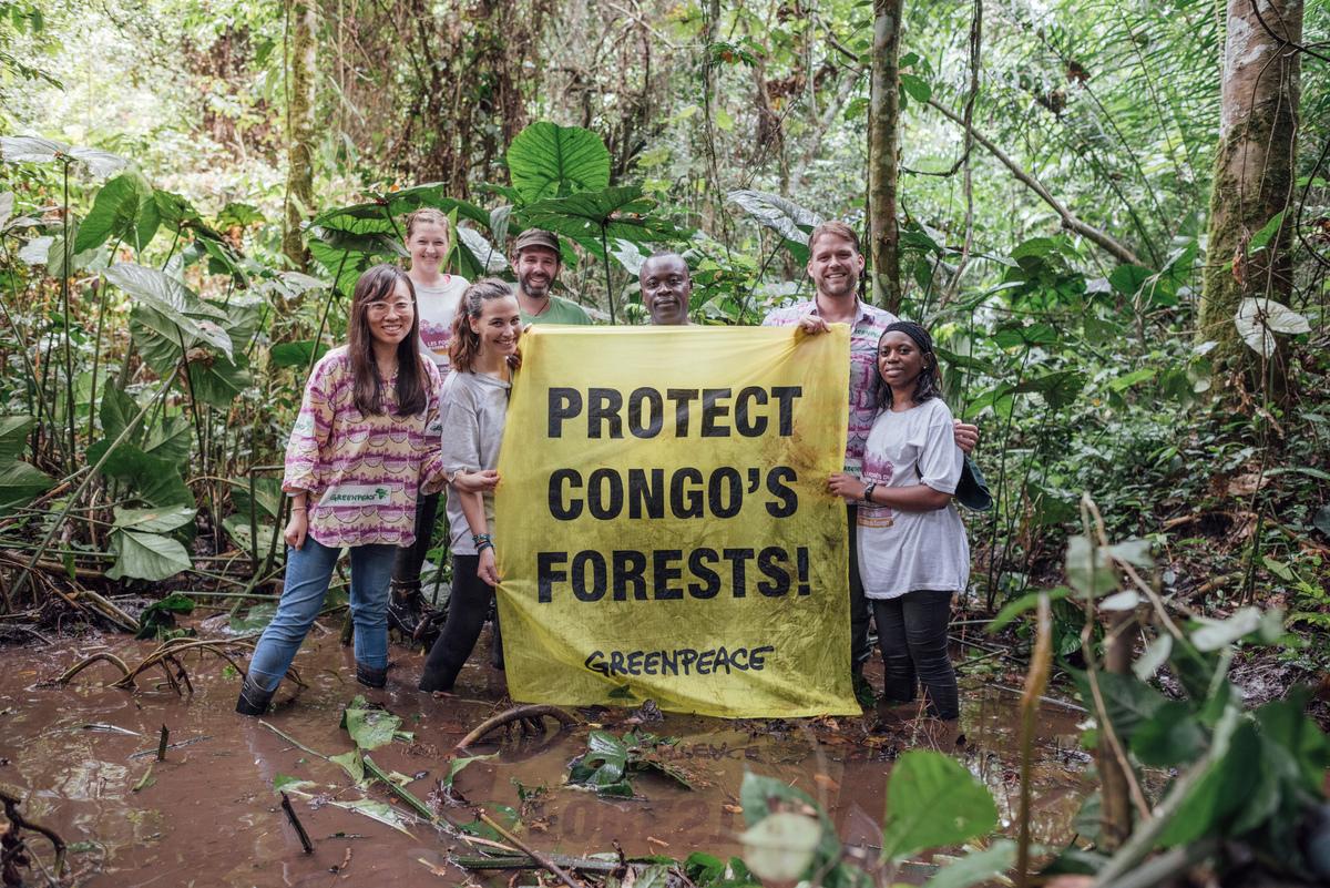 綠色和平森林專案團隊在科學家發現剛果盆地森林內的泥炭地後,與當地社區合作,展開「守護剛果雨林(Protect Congo's Forests)」行動,力倡政府與企業停止砍伐、開發林地,以維持森林儲碳力及生物多樣性。© Kevin McElvaney / Greenpeace