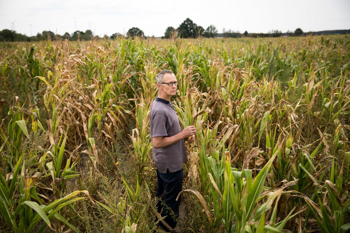 原告之一的德國農夫Heiner Lütke Schwienhorst控告政府無為,氣候變遷引發熱浪直接衝擊農作收成,影響生計。© Gordon Welters / Greenpeace