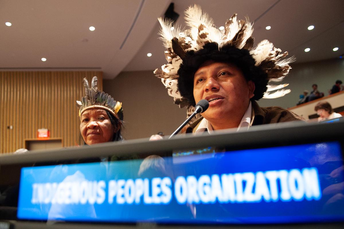 2018年4月,巴西亞馬遜雨林內的卡里普納族人在綠色和平陪同下,來到聯合國原住民問題常設論壇(UNPFI),揭露非法毀林及盜伐行為,正在侵害當地原住民的家園及生存權利,並呼籲國際社會和巴西政府履行職責,保護原住民及雨林,並於2019年11月再次去到歐盟,要求國際領袖們正視亞馬遜雨林危機。© Luiz Roberto Lima / Greenpeace