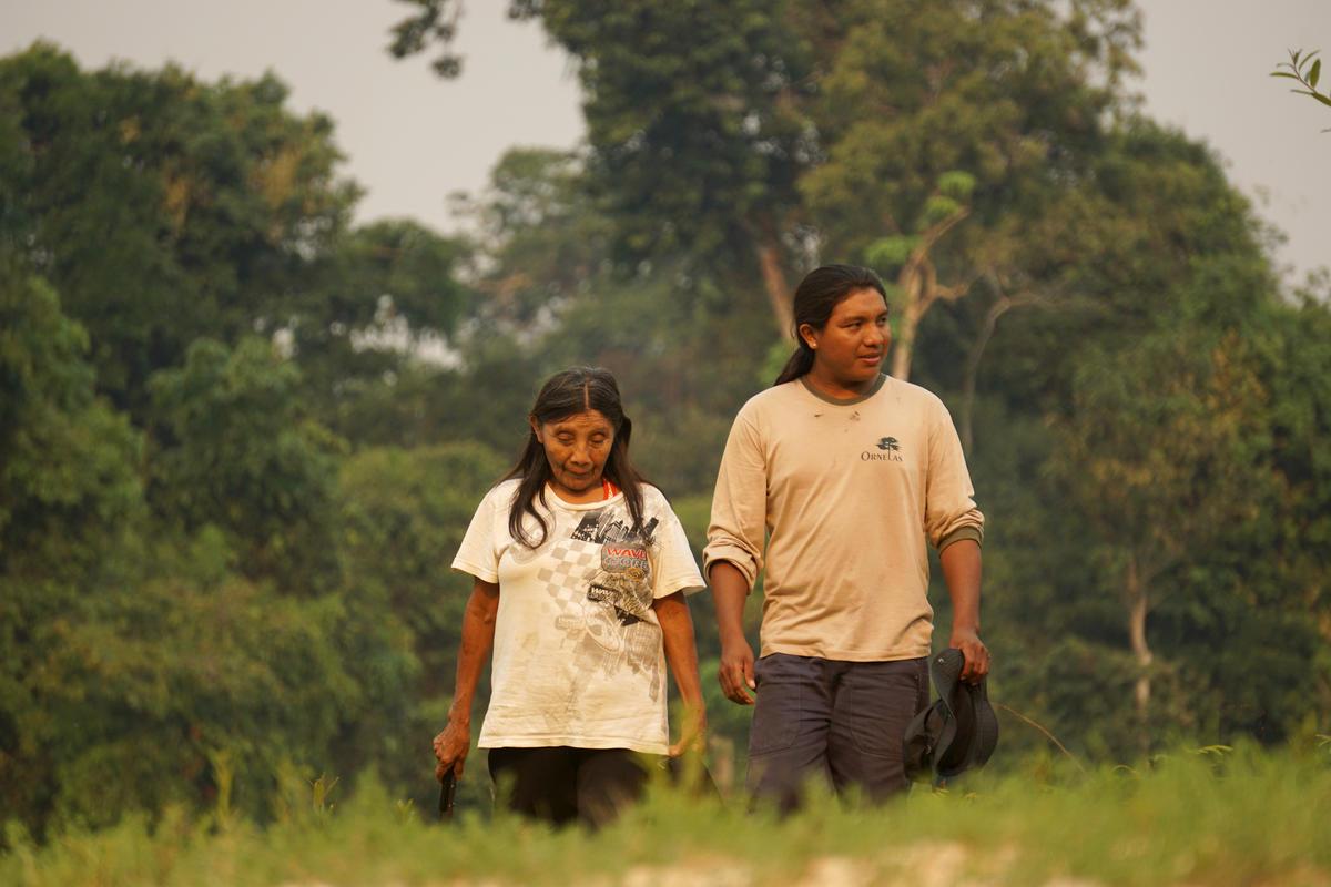住民的祖傳土地正頻繁遭受掠奪和破壞。© Rogério Assis / Greenpeace