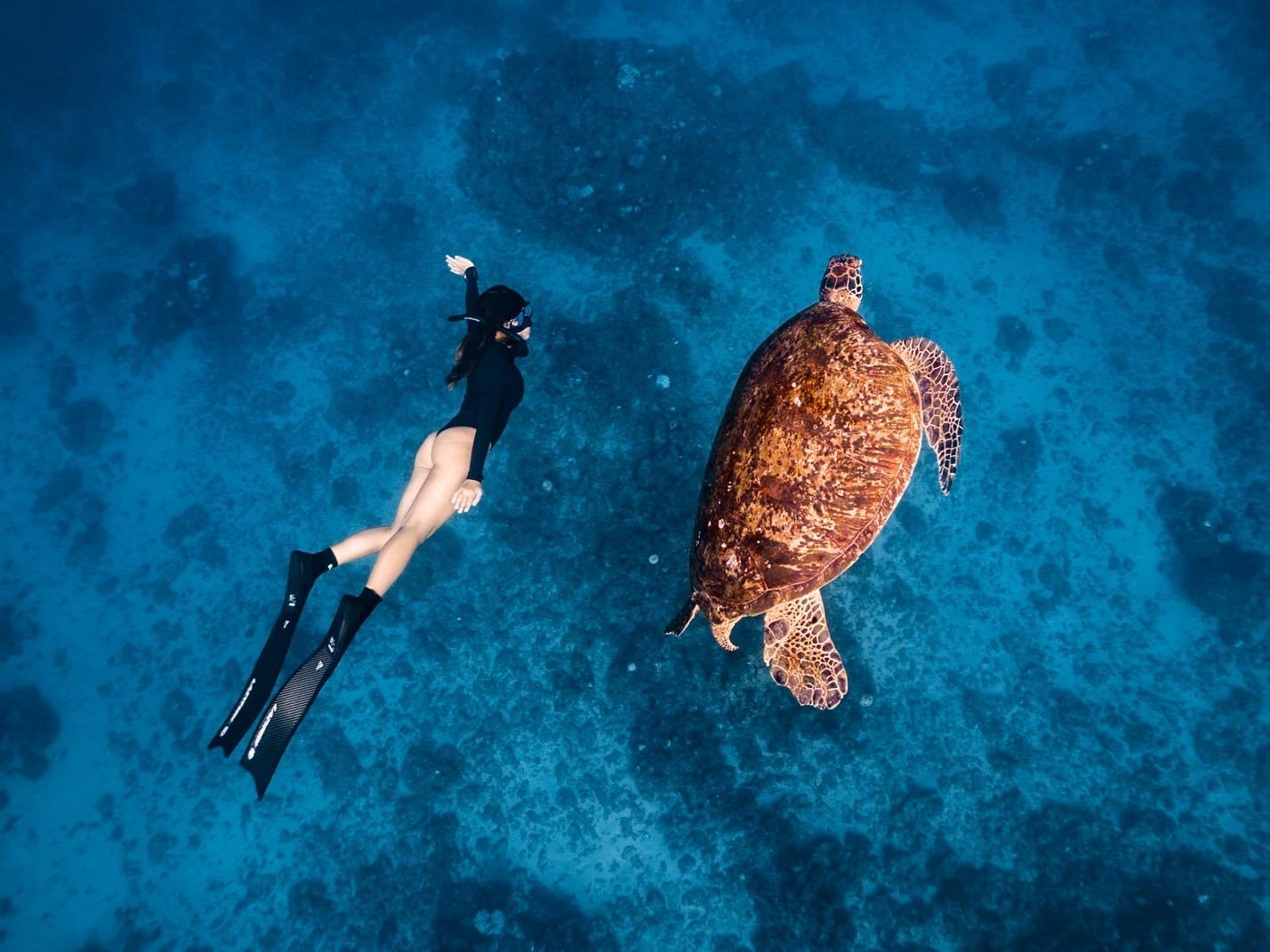 謎卡和巨大的海龜同游,親近海洋生態讓她更希望能保護這脆弱的藍色世界。