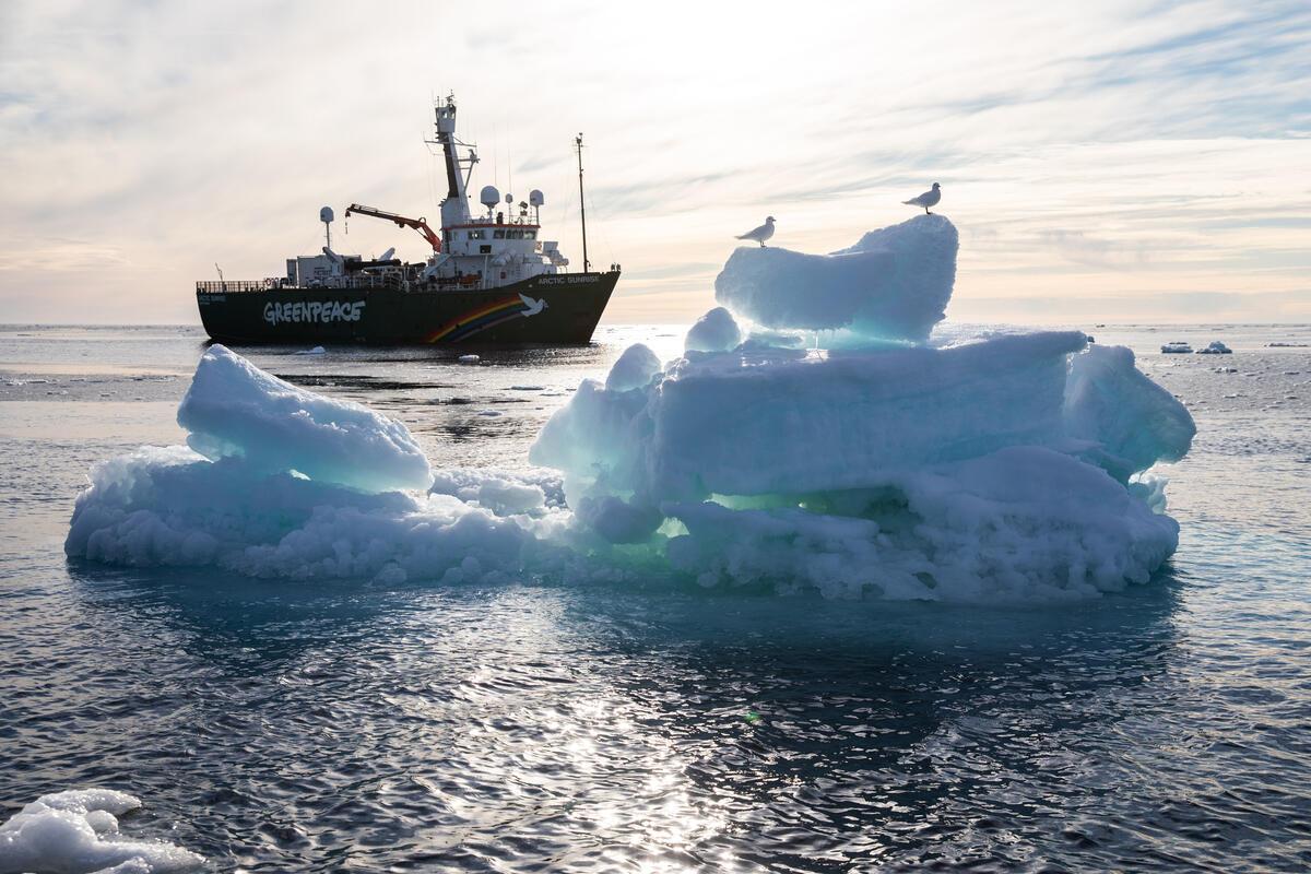 綠色和平研究團隊於2020年9月前往北極進行海冰調查,見證面積融化至有紀錄以來第二低,無疑是暖化警訊。© Daniella Zalcman / Greenpeace