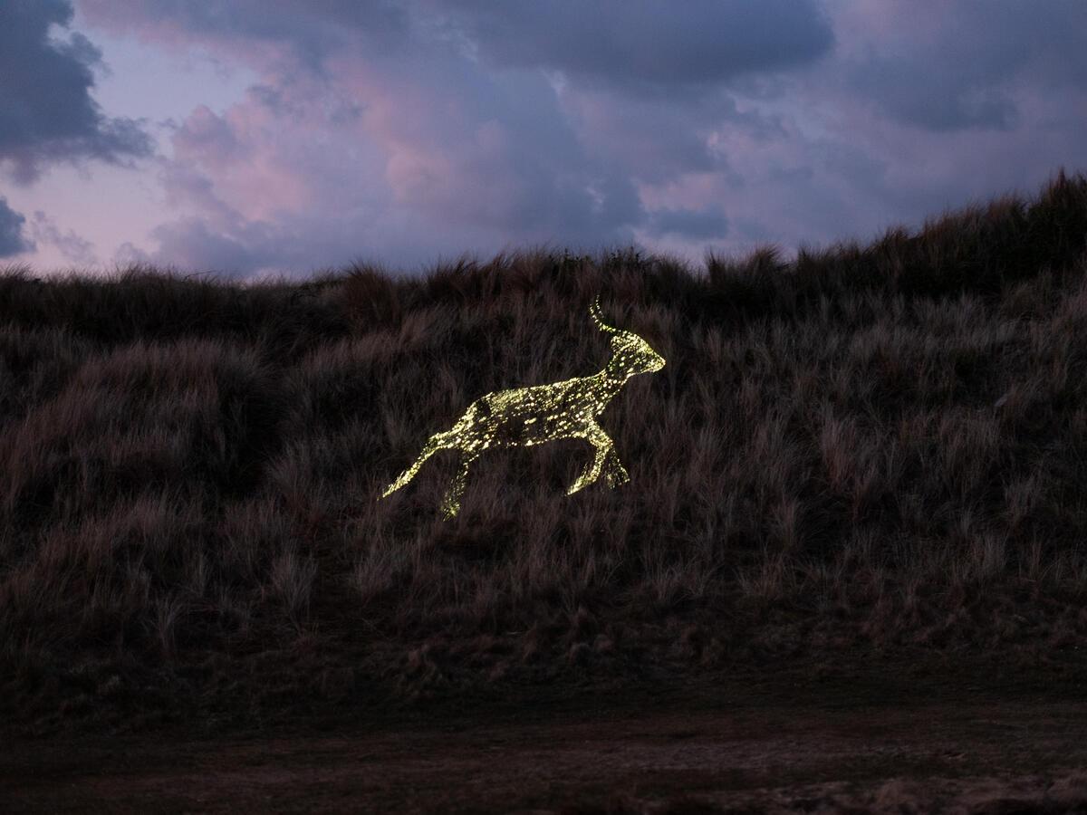 無人機排列成在山坡上奔跑的路,象徵來自全球各地的物種,會聚G7高峰會地點康瓦爾郡(Cornwall),共同表達訴求。