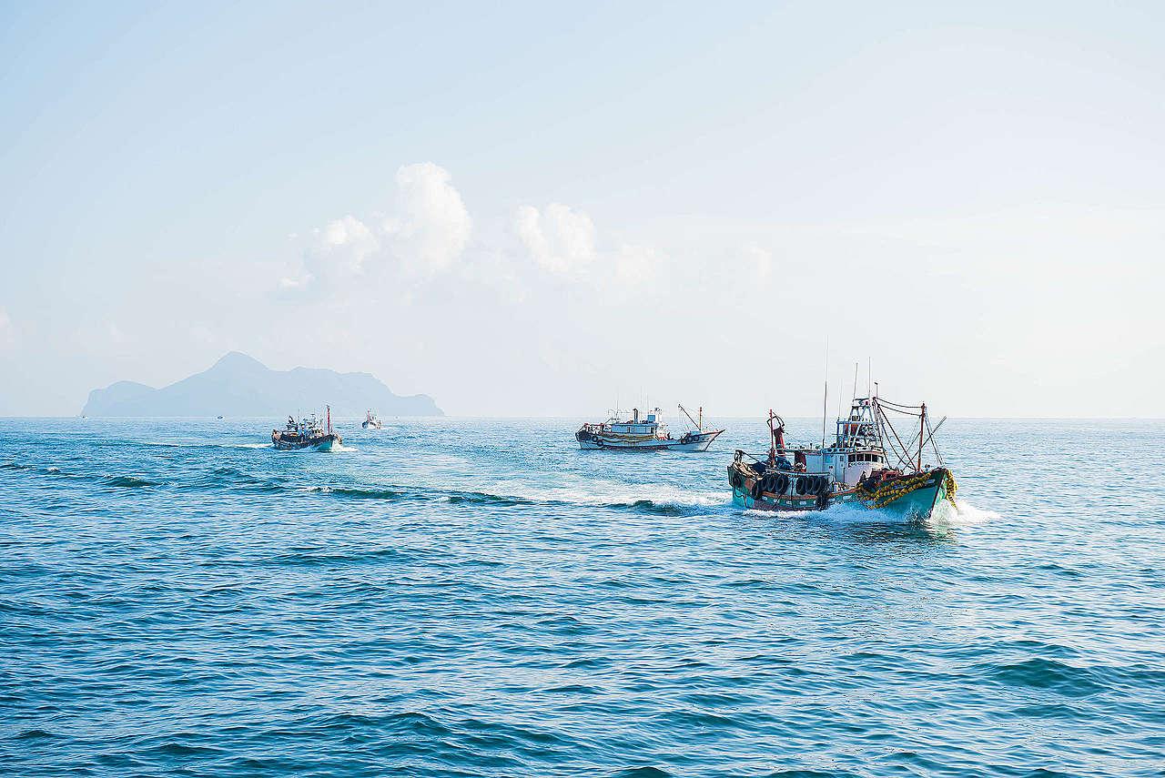 臺灣四面環海,擁有絕美海景與豐富海洋資源,然而在數十年來的工業化捕撈下,海洋生態已岌岌可危,需要您我及時守護。© Greenpeace