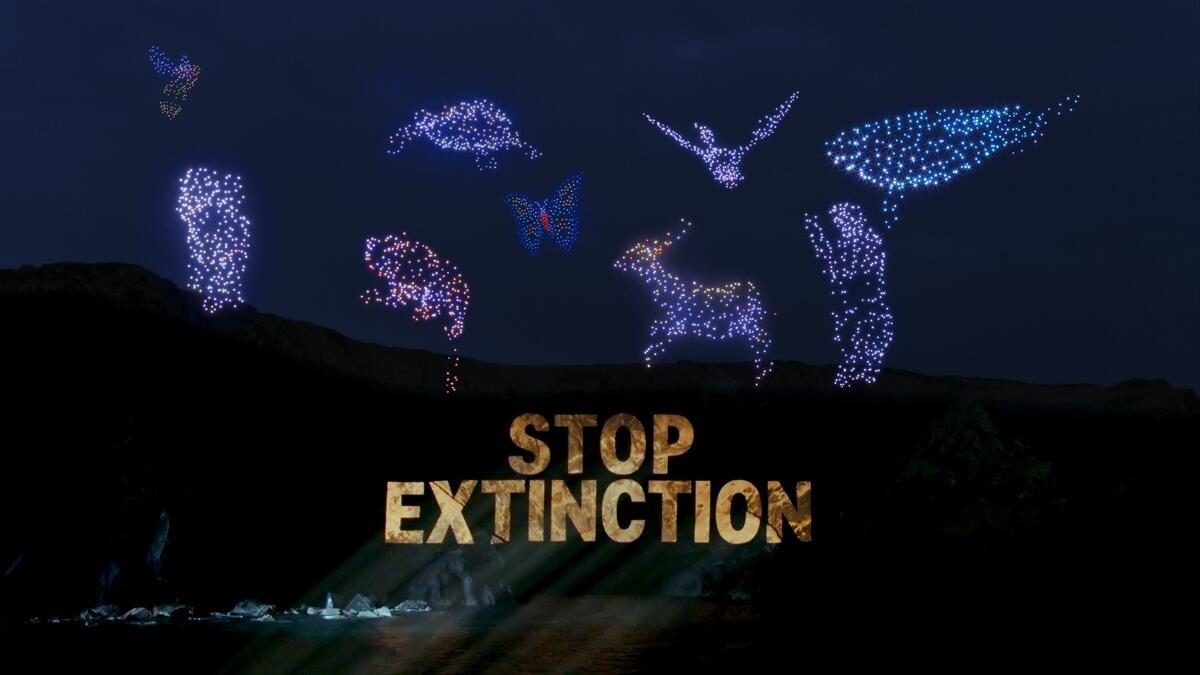 全球因為氣候危機和過度使用環境資源,造成多個物種瀕臨滅絕,綠色和平以無人機排列成9種指標性動物,並投影「阻止滅絕」,向各國政府倡議。