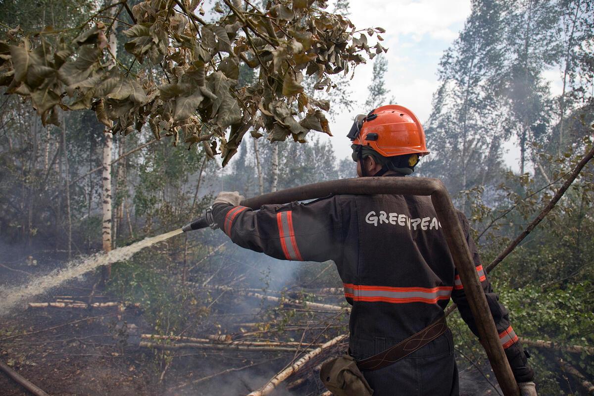 綠色和平俄羅斯辦公室除組織消防隊協助滅火工作,也向俄羅斯政府提出建議,要求當局訂定綠色政綱,並組織更有效的森林和自然防火系統。© Maria Vasilieva / Greenpeace