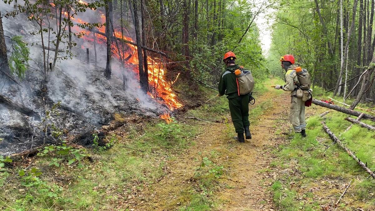 綠色和平俄羅斯辦公室與多名森林消防志工、自然保護區檢查員迅速組成織聯合消防隊,前往Lena Pillars國家公園協助救災。© Olesya Volkova / Greenpeace