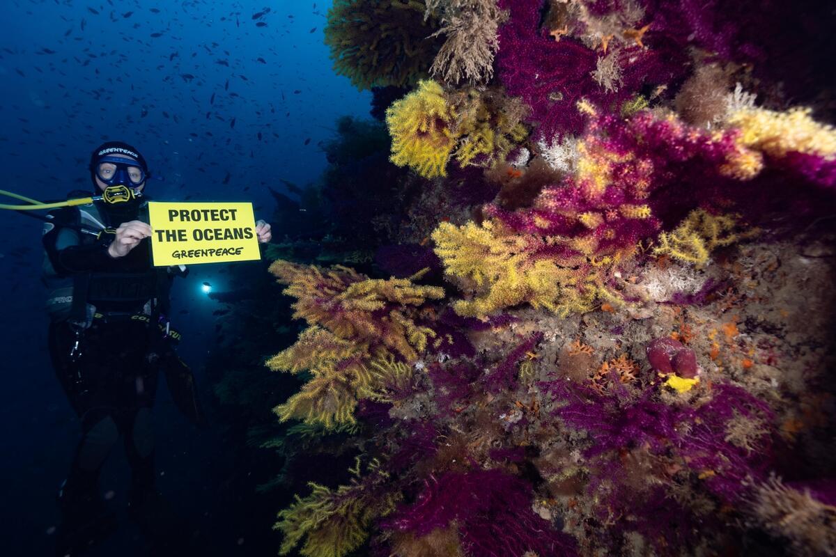 綠色和平義大利辦公室2021年6月前往Gargano海洋保護區附近,於岸上舉行淨灘活動,同時在水下記錄珊瑚及生態健康。行動者手舉「保護海洋」字牌,乎遇政府及各界共同維護海洋健康。