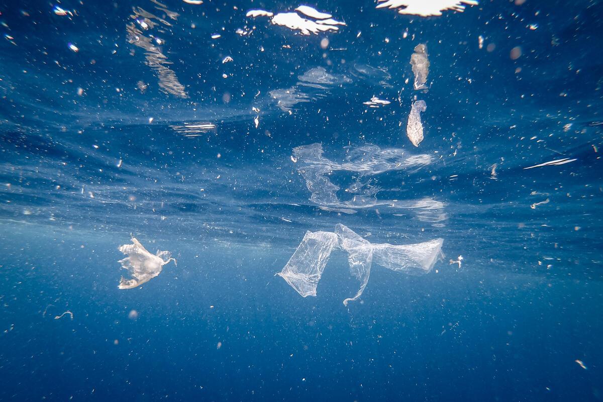 一次性塑膠累積成大量垃圾,流入自然環境,破壞生態健康,甚至裂解成微塑膠,透過食物鏈回到人類體內。