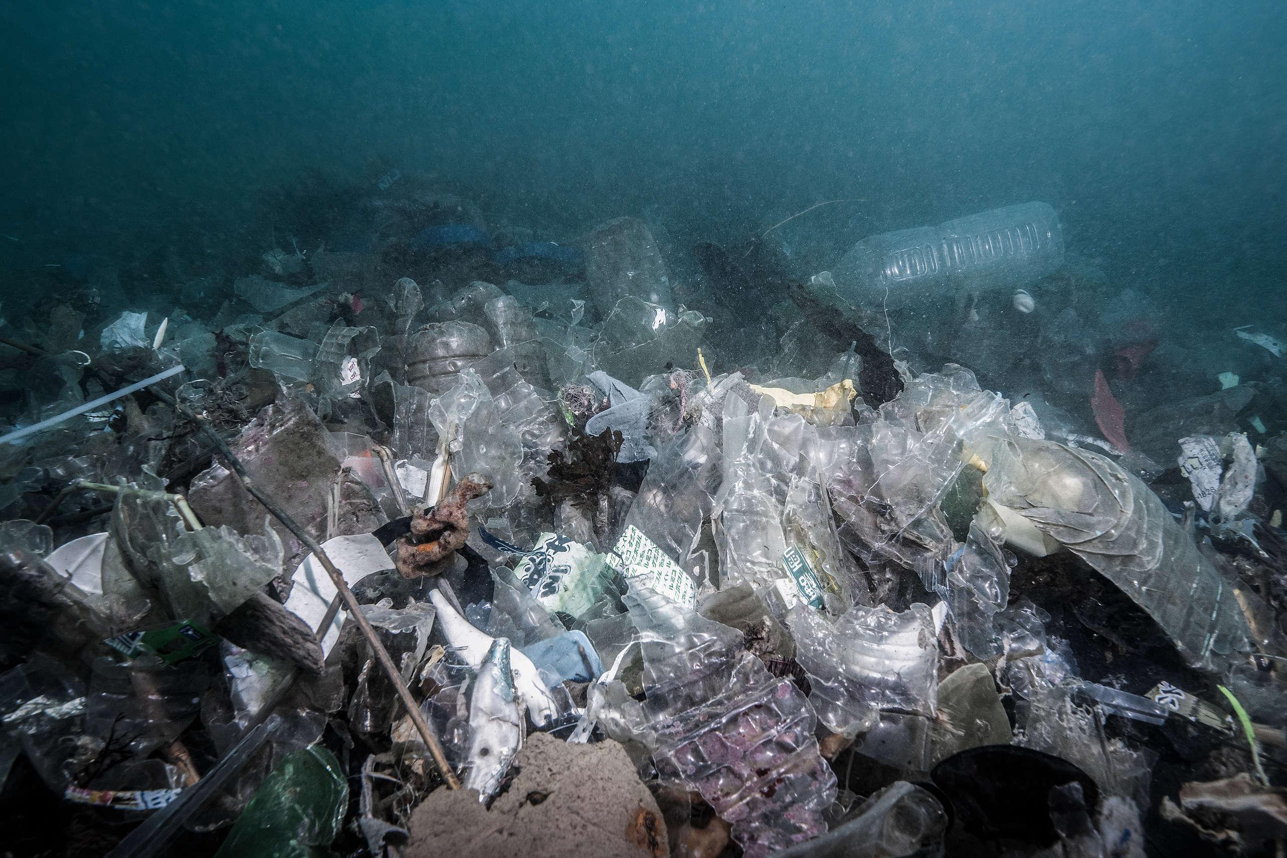 基隆市水產動植物保育區海域竟然這麼多垃圾,而且除了廢棄漁具,還有大量寶特瓶和一般生活用品。