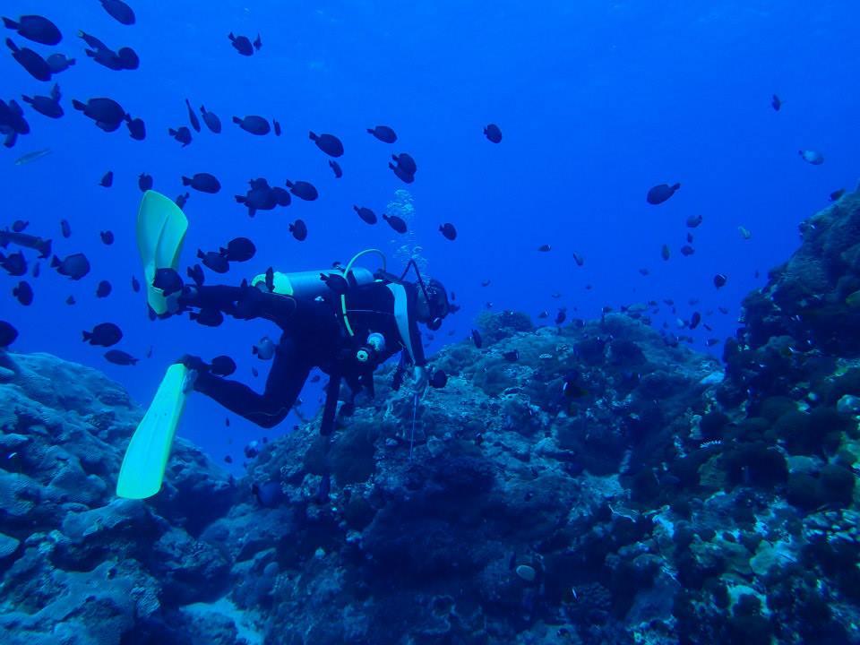 蝦卷熱愛潛水,在綠島擔任教練,多年來發現海洋環境逐漸改變。