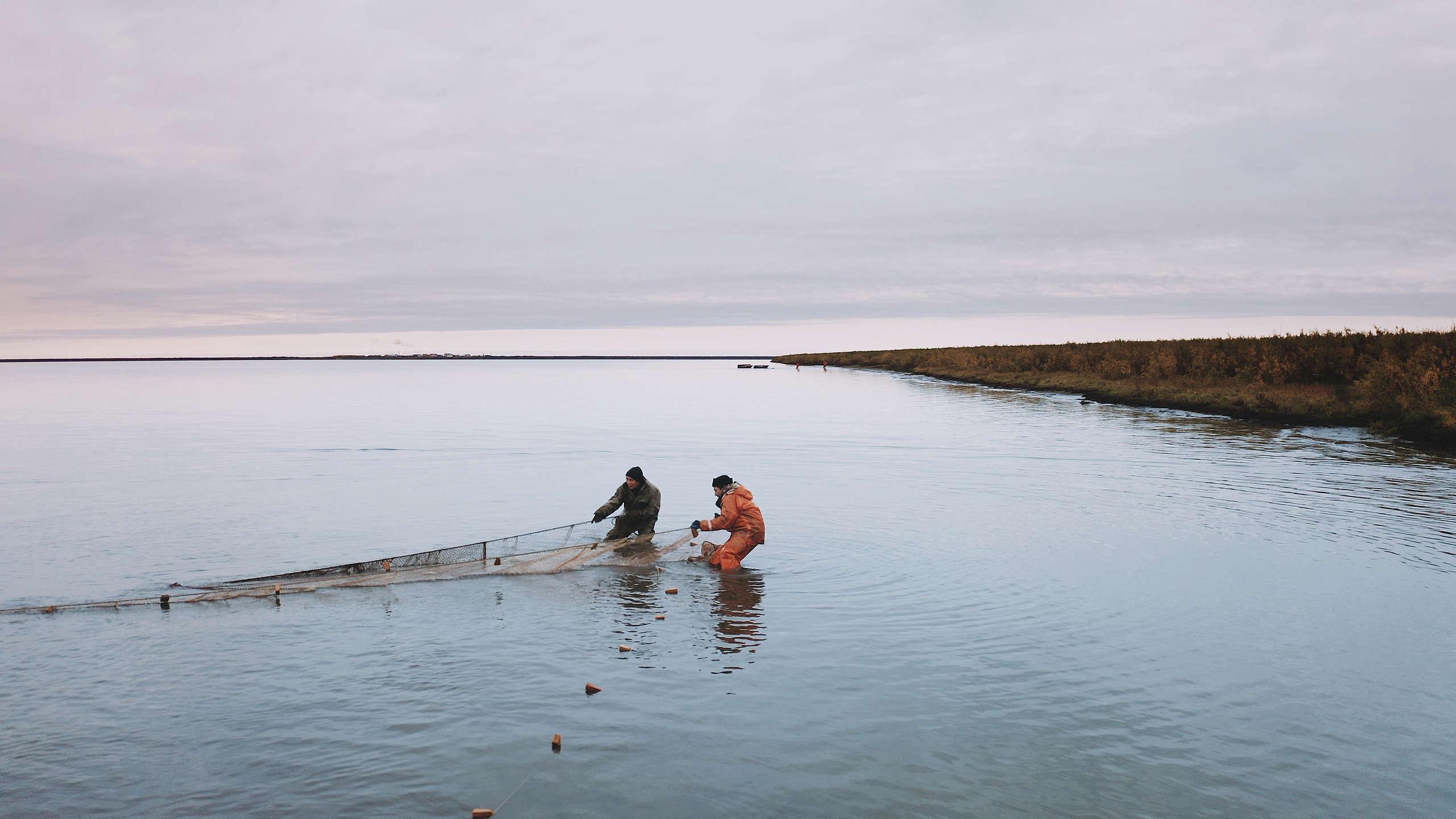 俄羅斯北極地區的波霍德斯克村(Pokhodsk),因全球暖化影響,科雷馬河水表面溫度已升高3度,如今漁獲量下降近10倍。