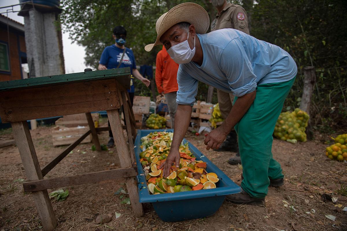 在潘塔納爾史無前例的大火之後,當地人們正準備食物給從火災中救援出的動物。