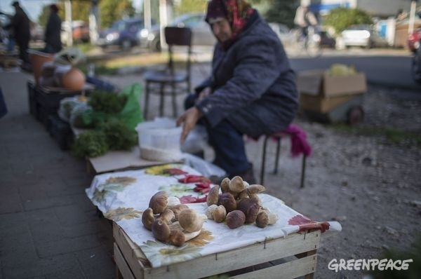 Resident Sells Local Produce in Russian Market © Denis Sinyakov / Greenpeace